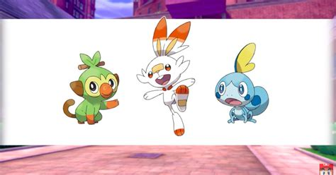 Pokémon Sword and Shield's new starters announced - Polygon