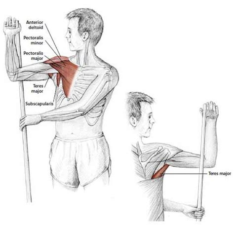 Arm Up Rotator Stretch - Common Neck & Shoulder Stretching