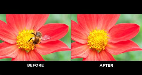 Photoshop's New, More Powerful 'Content-Aware Fill' Can